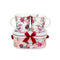 Set Doua Cani Portelan Magic Roses