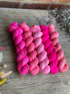 Dyed to order - Cherry Blossom Five Skein Kit