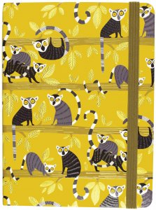 Journal: Lemur Palooza