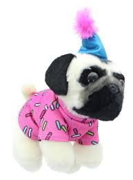Doug the Pug Birthday, 5 in