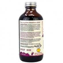 Load image into Gallery viewer, SURO® Organic Elderberry Syrup-Kids - 236ml