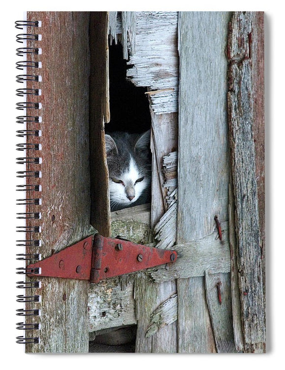 Barn Cat - Spiral Notebook
