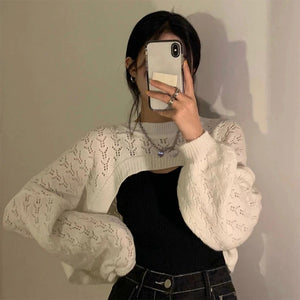 Hollow long-sleeved sweater top short blouse
