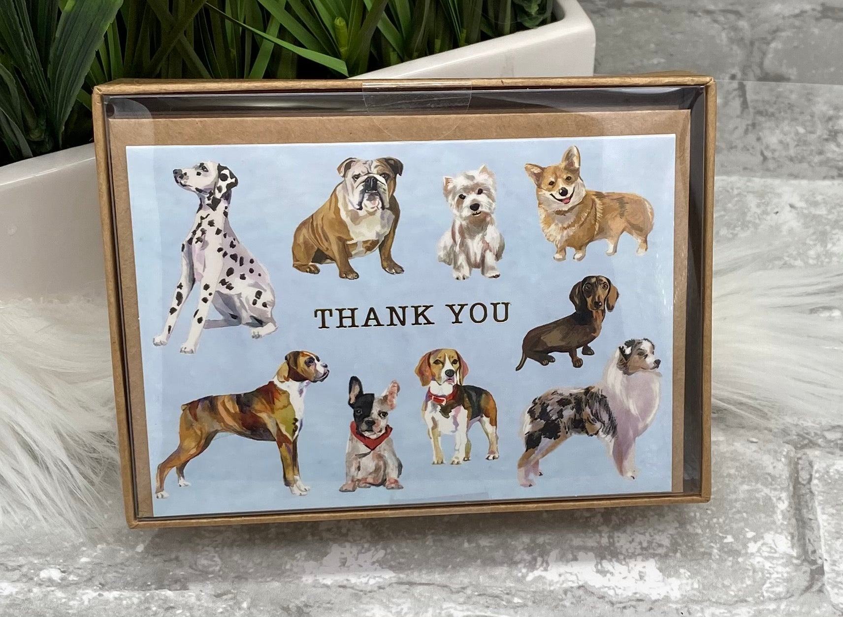 Thank You Dog Note Cards
