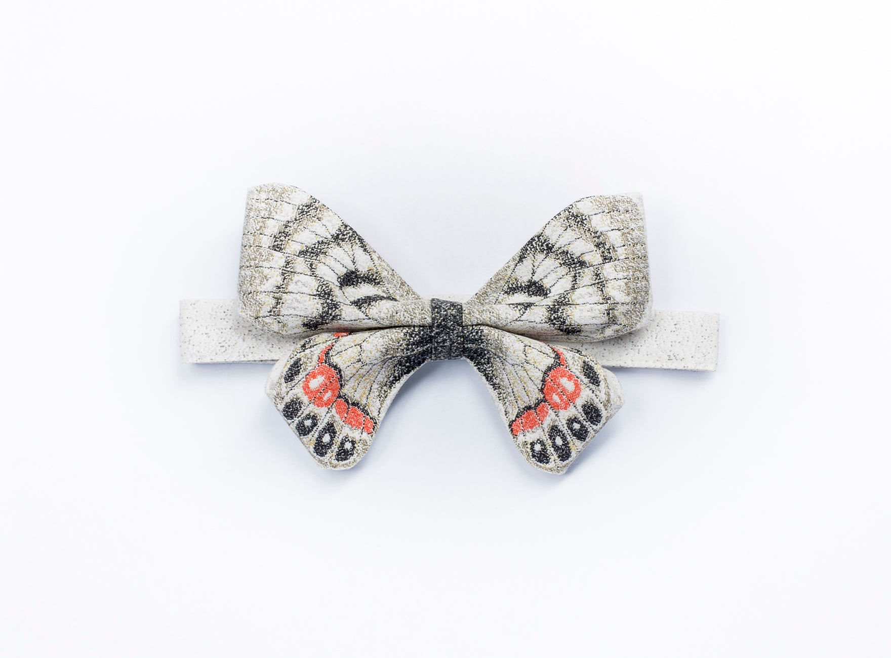 PARNASSIUS CHARLTONIUS bow tie