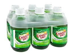 Canada Dry Ginger Ale (6 pack)
