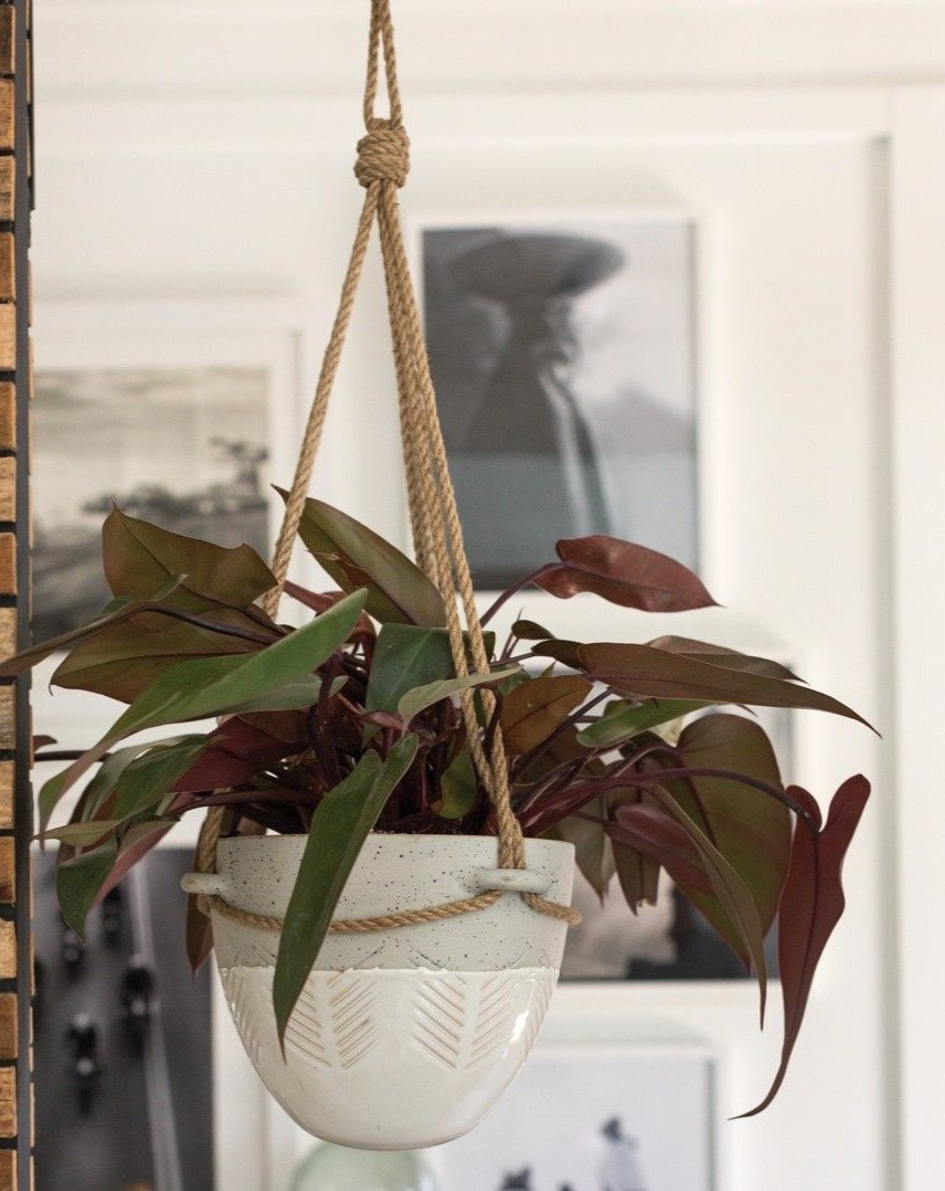 Hammock Hanging Pot