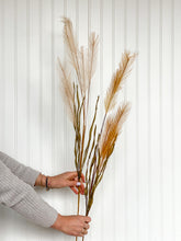 Load image into Gallery viewer, Faux / Artificial / fake Pampas Grass Stems