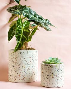 Beautiful speckled pot is the perfect modern pot for your home office decor.