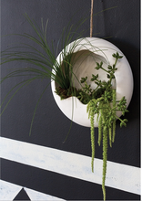 Load image into Gallery viewer, Piazza Wall Hanging Planter