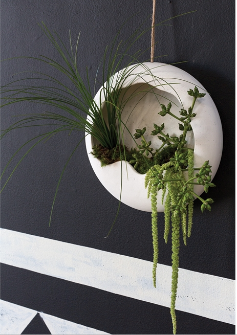 Piazza Wall Hanging Planter
