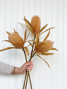 3 stems of artificial / faux  Proteas in hand