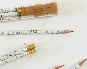 Pencil Terrarium: Set of 5 Pencils