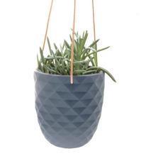Load image into Gallery viewer, Thimble Hanging Planter