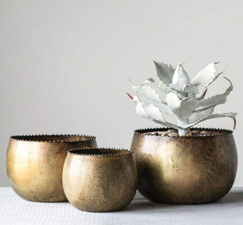 3 Antique Brass Planters with potted Cactus