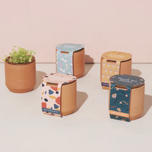 Tiny Terracotta Grow Kits by Modern Sprout