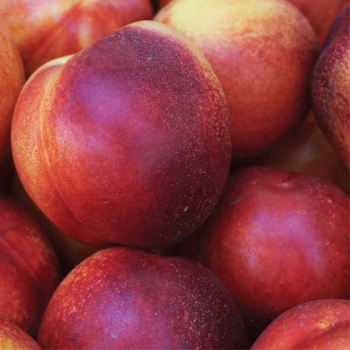 Apricots, Peaches and Nectarines - Early Summer Stone Fruit Varieties