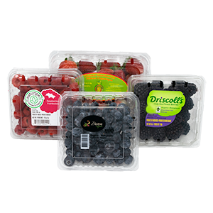 Organic Berry Box