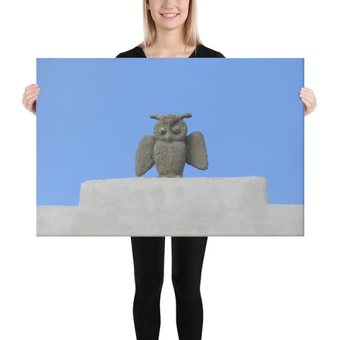 Owl Roof - Canvas