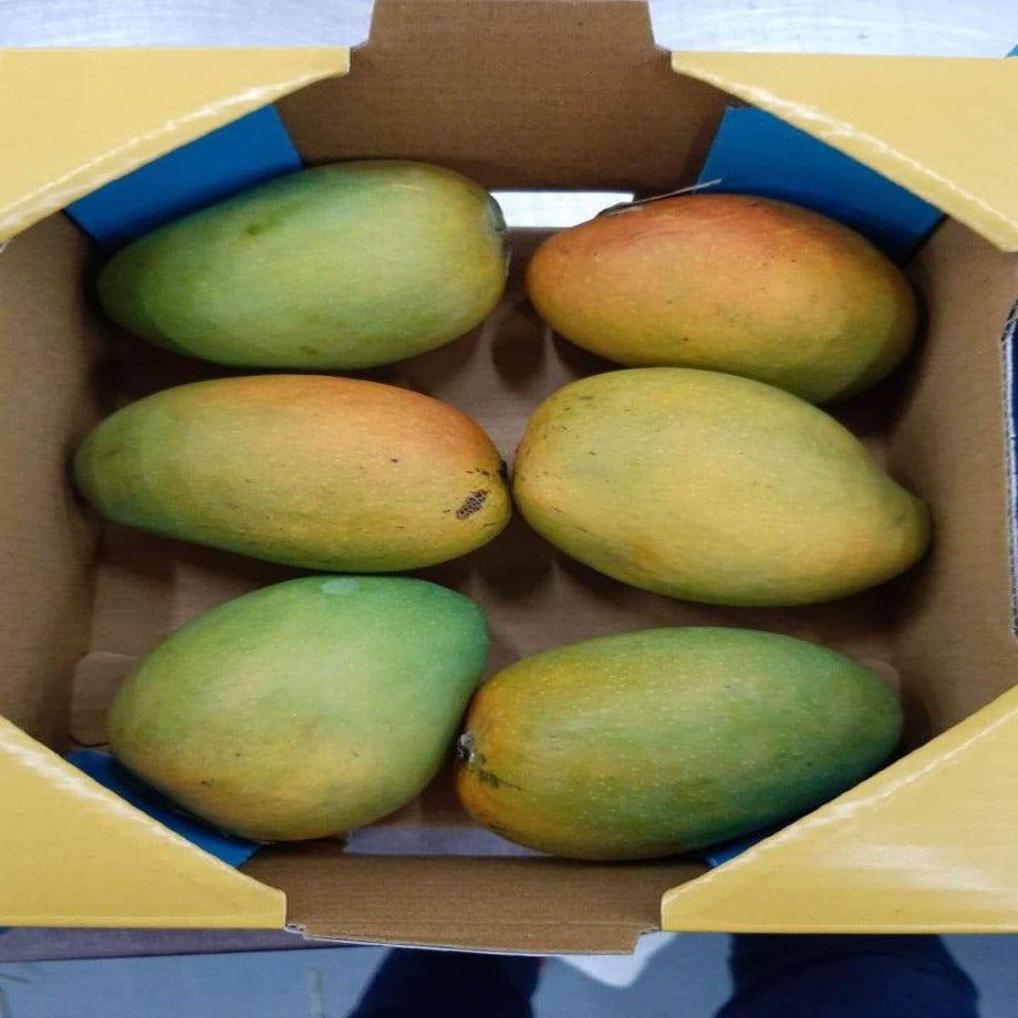 Original Ratnagiri Alphonso Mangoes by Edible Routes