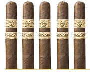 Rocky Patel Decade Lonsdale (5 Cigars Sampler)