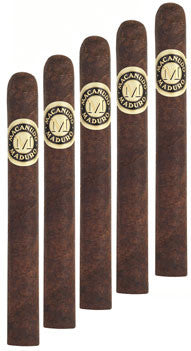 Macanudo Duke of Devon Maduro (5 Cigars Sampler)