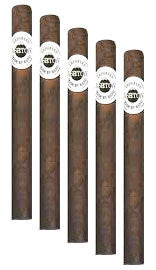 Ashton Aged Maduro #30 (5 Cigars Sampler)