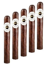 Ashton Aged Maduro #40 (5 Cigars Sampler)