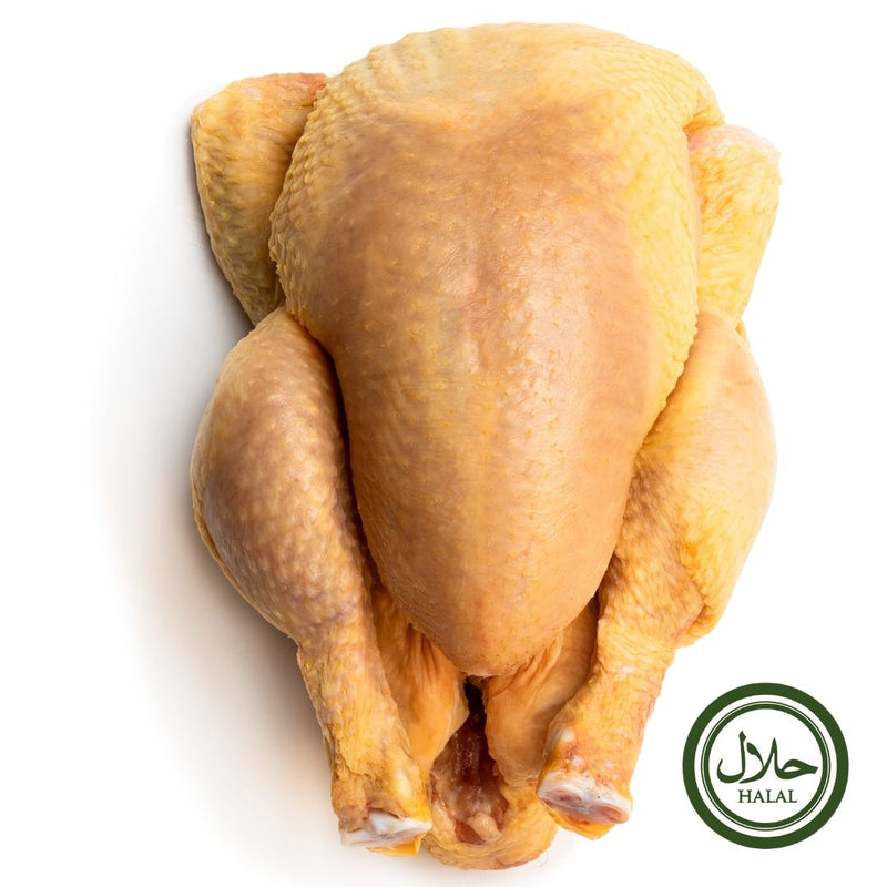 Halal Corn Fed Poussin Whole 250 gr - London Grocery