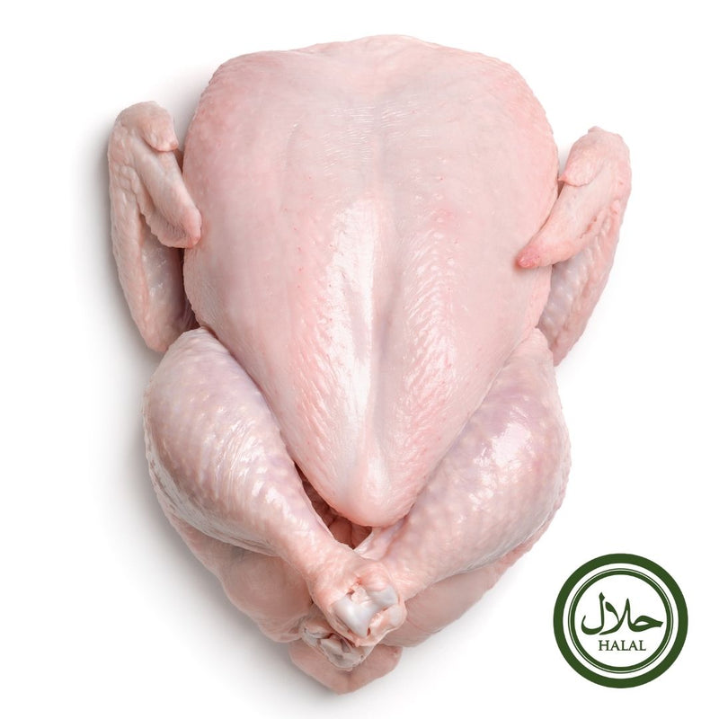 Halal Whole Plain Chicken ~ 1.8 kg - London Grocery