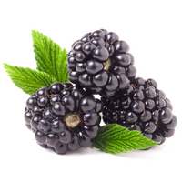 Blackberries 125 gr - London Grocery - Online Grocery Shopping