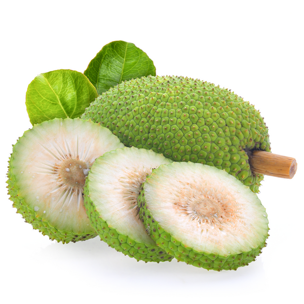 Breadfruit 1 piece ~ 1 kg - London Grocery - Online Grocery Shopping