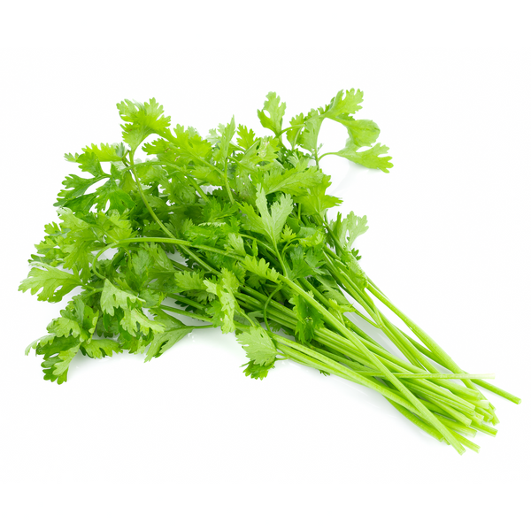 Coriander 1 bucnh - London Grocery - Online Grocery Shopping