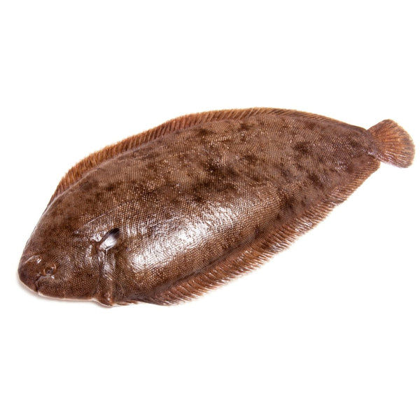 Dover Sole 1 kg - London Grocery - Online Grocery Shopping