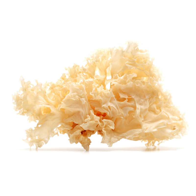 Dried White Fungus 100gr -London Grocery