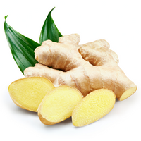 Ginger 2pcs - London Grocery - Online Grocery Shopping