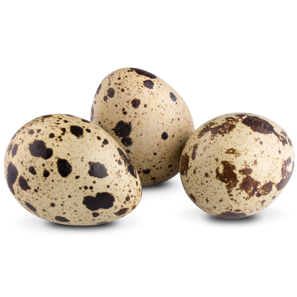 Grey Francolin eggs - London Grocery - Online Grocery Shopping