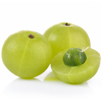 Indian Gooseberry 250 gr - London Grocery - Online Grocery Shopping