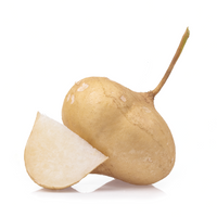 Jicama / Mexican Turnip - London Grocery - Online Grocery Shopping