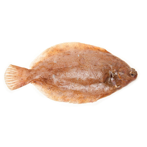 Whole Lemon Sole 500gr - London Grocery