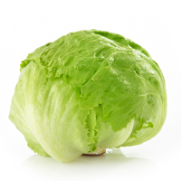 Lettuce 1 pack - London Grocery