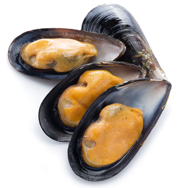 Fresh Mussels 1 kg - London Grocery - Online Grocery Shopping