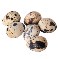 Quail Eggs - London Grocery - Online Grocery Shopping