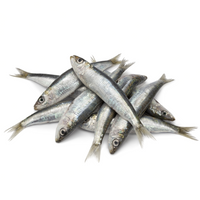 Sardines 1 kg - London Grocery - Online Grocery Shopping