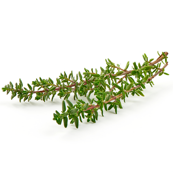 Thyme 1 bunch - London Grocery - Online Grocery Shopping