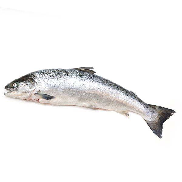 Whole Salmon 2-3 kg - London Grocery - Online Grocery Shopping
