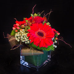 Modern Cube Arrangements - Limelight Floral Design