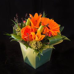 Take out Boxes - Limelight Floral Design