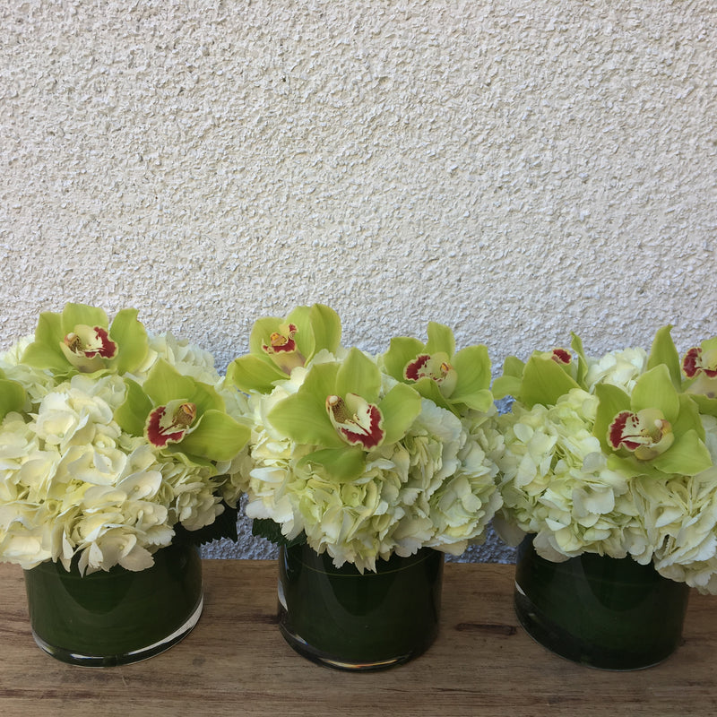 Modern Trio - Limelight Floral Design