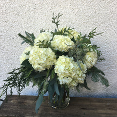 White Hydrangea - Limelight Floral Design
